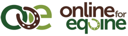 Online for Equine - Winner of BETA Retailer of the Year 2017 & Finalist 2019