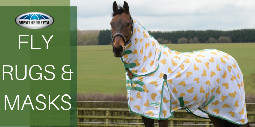 Buy Weatherbeeta Horse Fly Rugs & Masks - Online for Equine