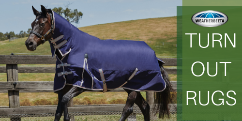 Buy Weatherbeeta Horse Turnout Rugs - Online for Equine