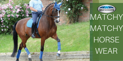 Buy Weatherbeeta Matchy Matchy Horse Wear - Online for Equine
