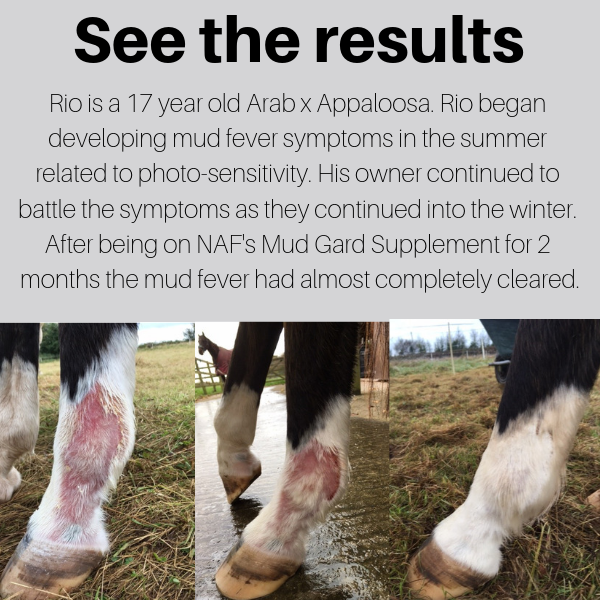 Mud Gard Supplement - see the results!