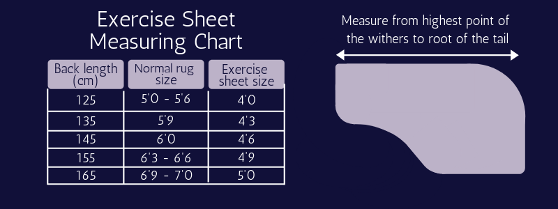 Exercise Sheet Measuring Chart