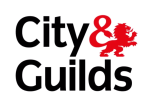 Online for Equine - City & Guilds Qualified Staff